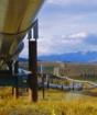 Казахстан приостановил экспорт нефти в Китай