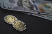 Поддержка валютного рынка от Нацбанка в марте  составила почти $1,5 млрд